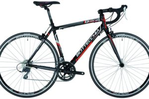 Bottecchia Unica
