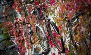 fahrrad-kaufen-berlin-mauer