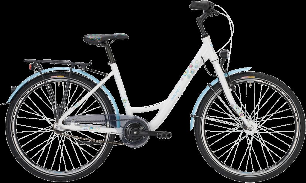 Fahrräder Berlin Brandenburg Falter FX 603