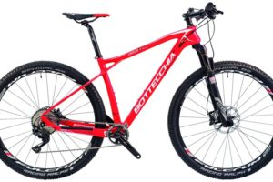 Bottecchia Ortles