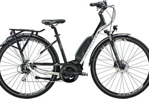 "Bottecchia ""BE23"" STEPS Damen 8-Gang"