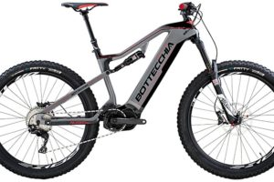 "Bottecchia ""BE80 Quasar"" STEPS 11-Gang"